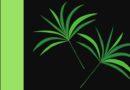 Paszporty roślin - drukowanie paszportów